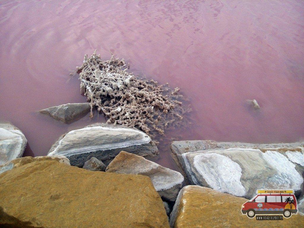 Różowe jezioro Torrevieja