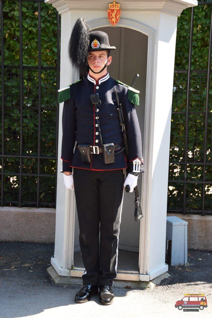 Strażnik przy pałacu.