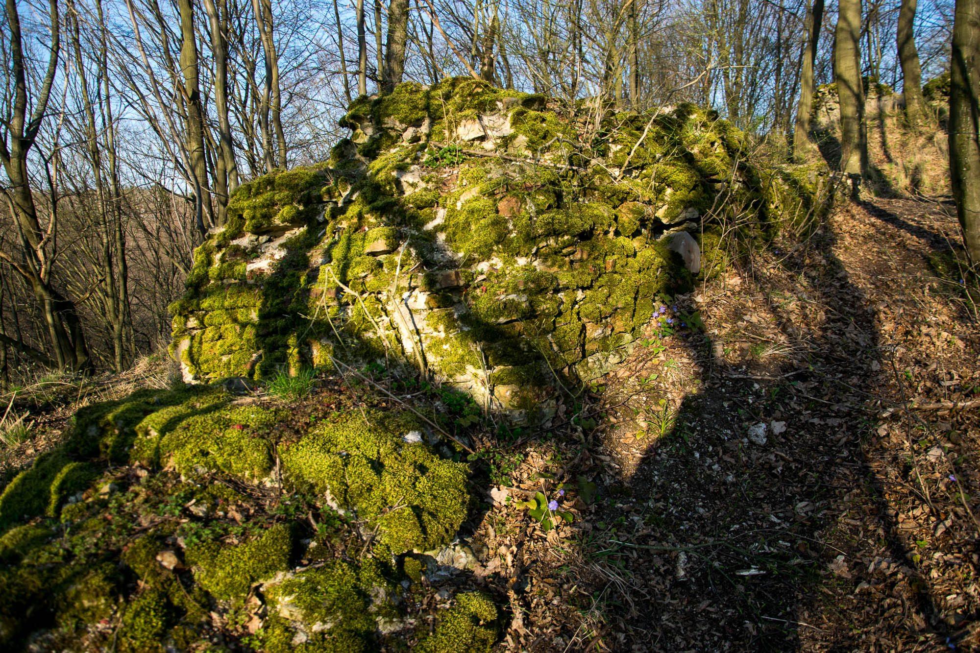 rembów ruiny zamku szumsko