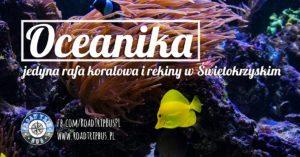 Oceanika w Kompleksie Świętokrzyska Polana