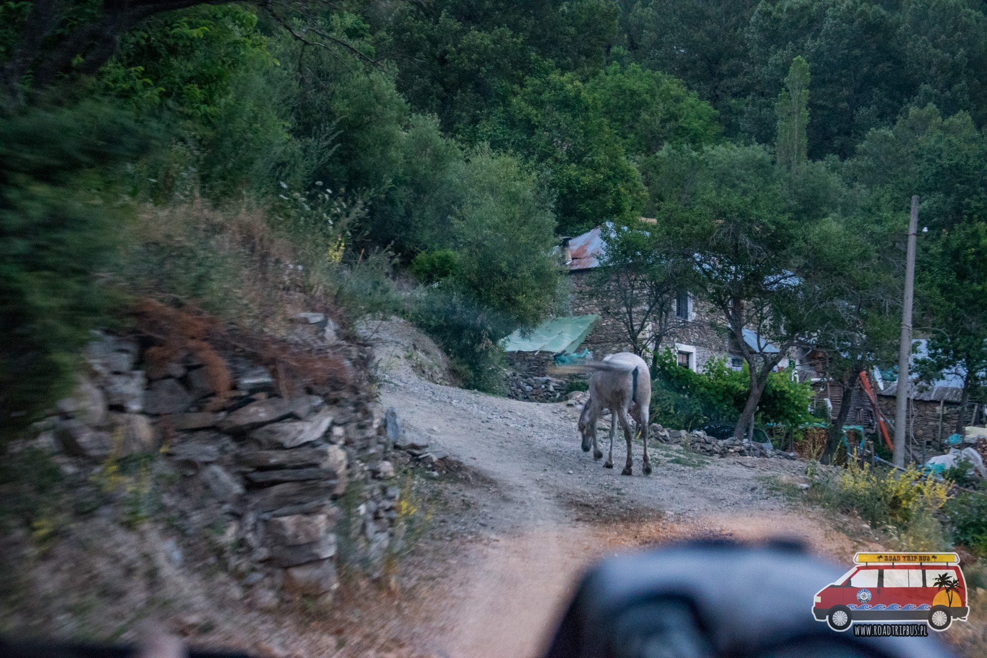 drogi w Albanii