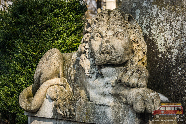 posąg lew