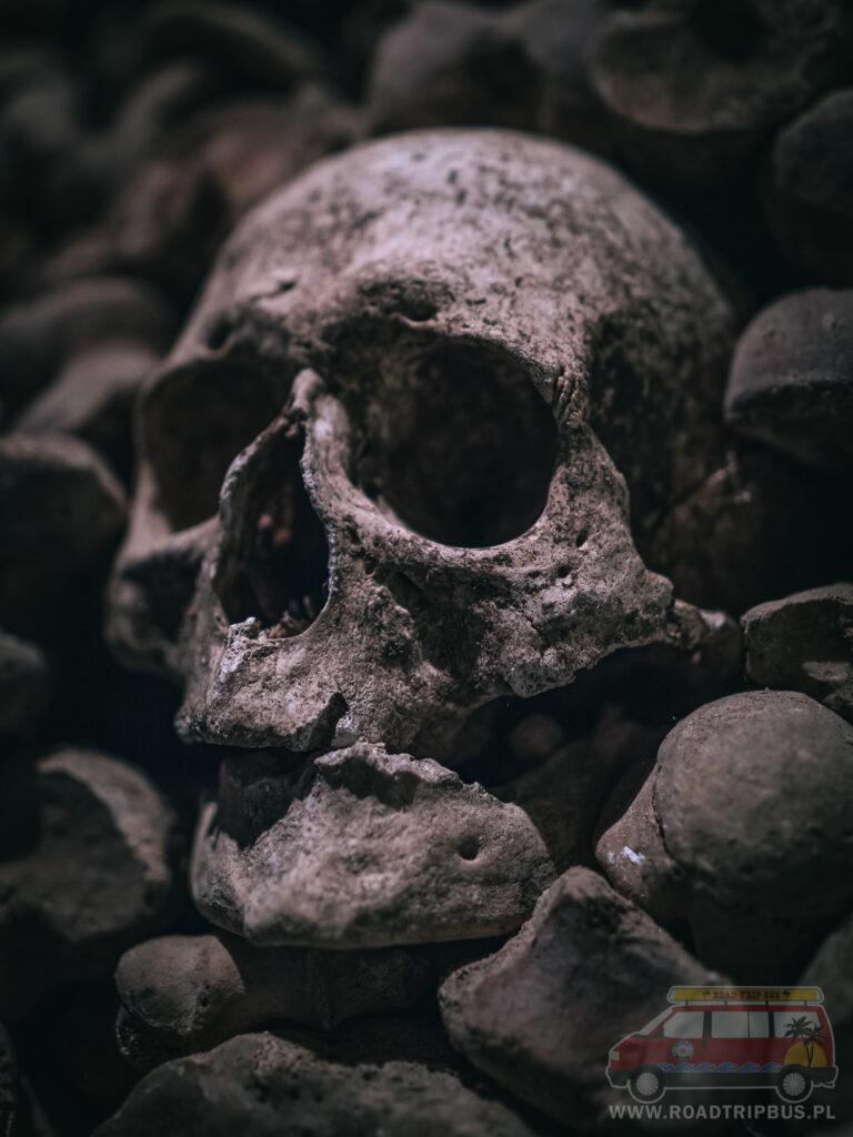 czaszka w katakumbach
