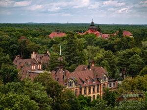 Baum & Zeit – spacer wśród koron drzew i ruin sanatorium w Beelitz